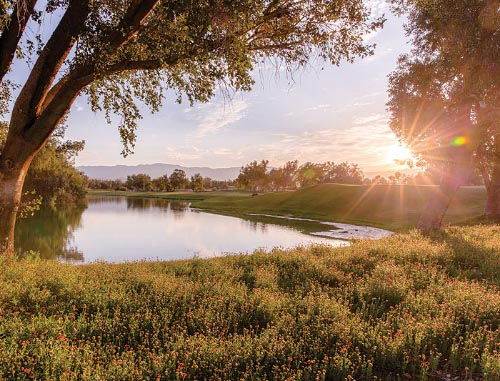 Image of Marriott's Shadow Ridge Golf Resort